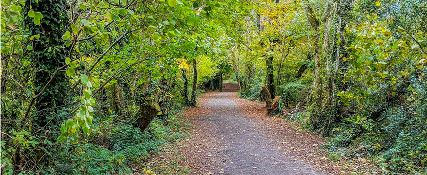 Pentewan Valley trail
